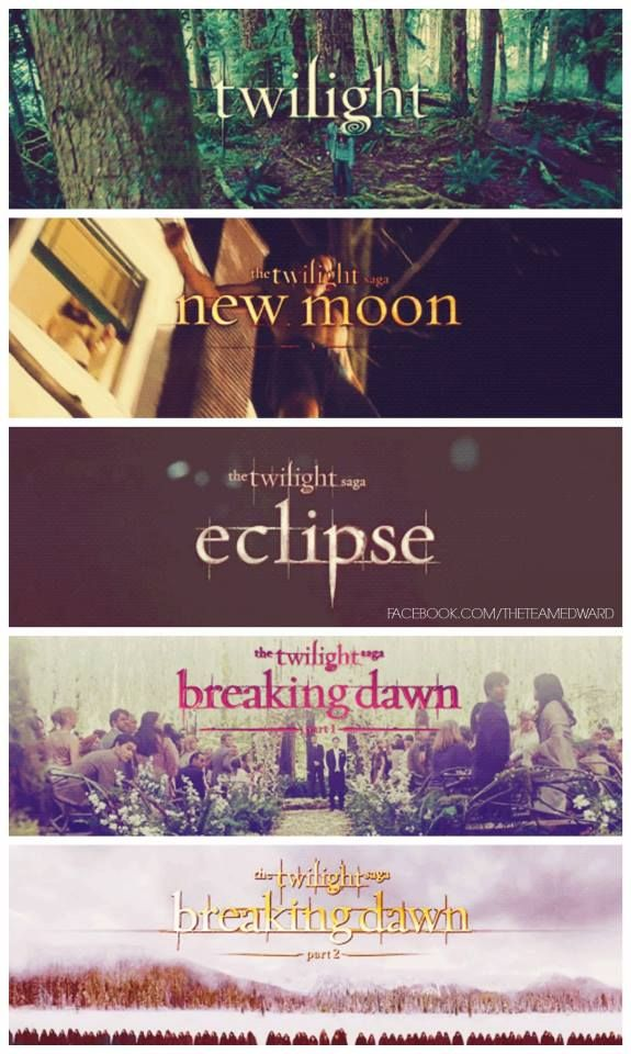 The Twilight Saga :) I wish there would be one more movie : (((