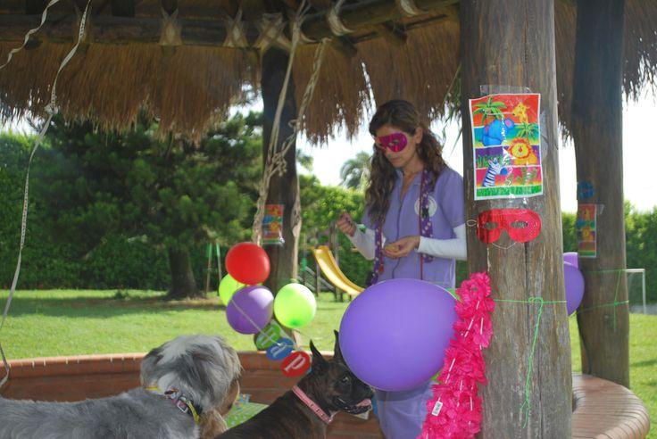 https://flic.kr/s/aHskeK37HU | Un lugar especial para nuestras fiestas | Nuestro colegio adaptó uno de los kioskos para celebrar nuestras fiestas... está muy guuuuaaaauuu... amplios espacio y al aire libre.