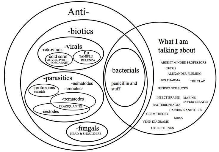 18 best antibiotics images on pinterest