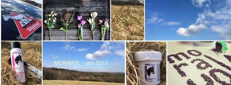 Moravol - jaro 2015