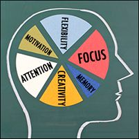How to improve fetal brain development