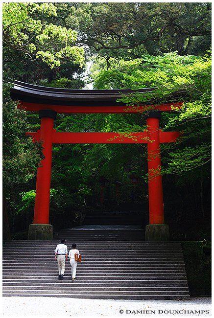 Usa jingu shrine, Oita. Look at the magnificent greenery!