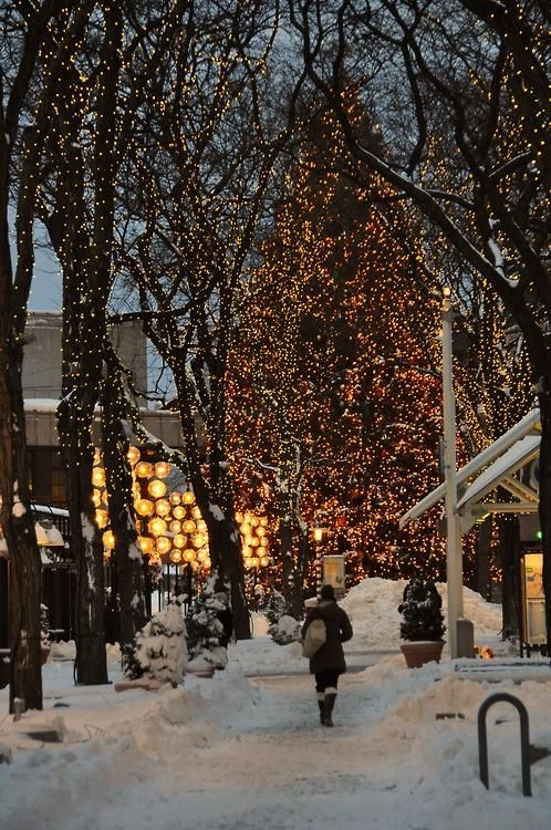Christmas in Quincy Market::Boston Mass