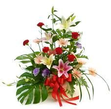 Where Can I Buy Cheap Flowers,  https://form.jotform.me/61141364895459  Order Flowers,Order Flowers Online,Buy Flowers Online,Buy Flowers,Ordering Flowers