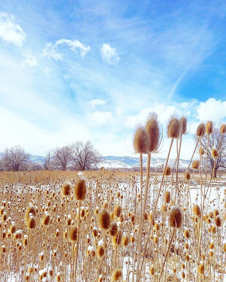 Tänä viikonloppuna olen nauttinut aurinkoisista talvipäivistä.  This weekend I've enjoyed the sunny winter weather. (via Instagram)