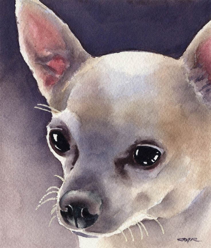 CHIHUAHUA Dog Art Print Signed by Artist DJ Rogers. $12.50, via Etsy.