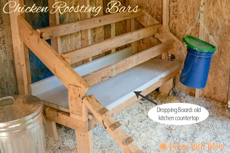 Chicken roosting bars with a dropping board. Plus check out a tour of our chicken coop!