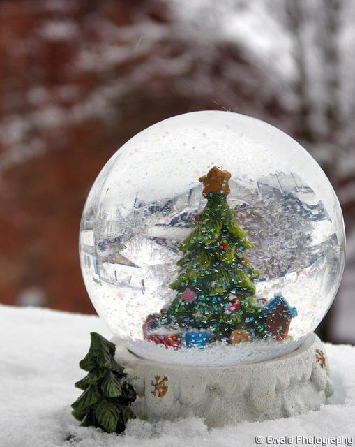 Snow Globe A32cc8dfdb93ba7e9dd4861fd3f11243