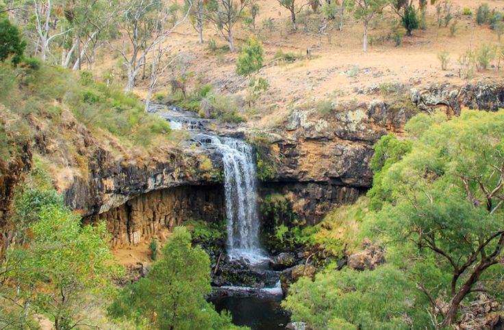 Thanks to NSW's wildly diverse climate, whether you go on a road trip North, West or South of Sydney there's a waterfall out there with your name on it.