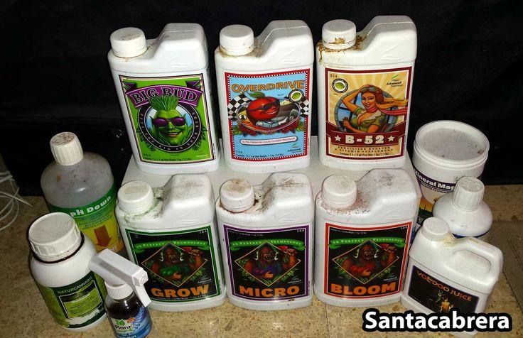 hydroponic cannabis grow guide pdf