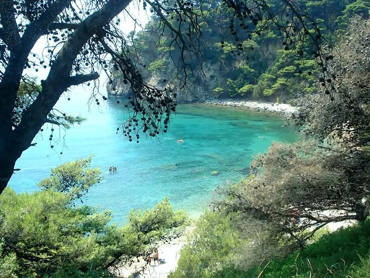 Combining the cleanest and amazing waters with the beautiful of the forest. Alonaki Breach - Preveza.