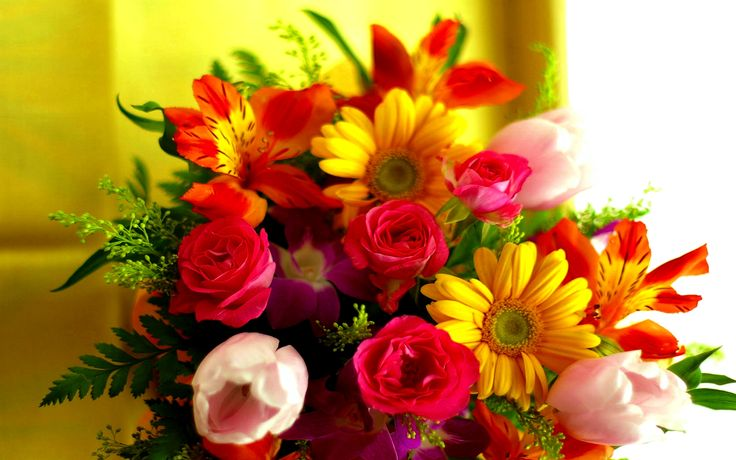 beautiful bunch of colorful flowers