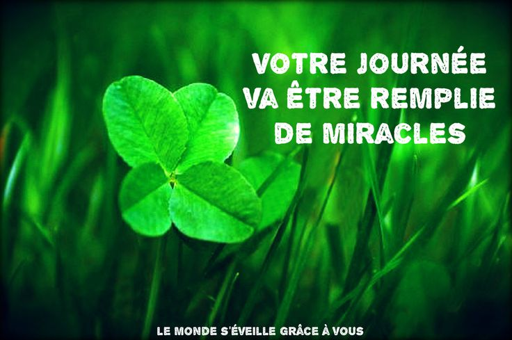 Your Day Will Be Filled of Miracles