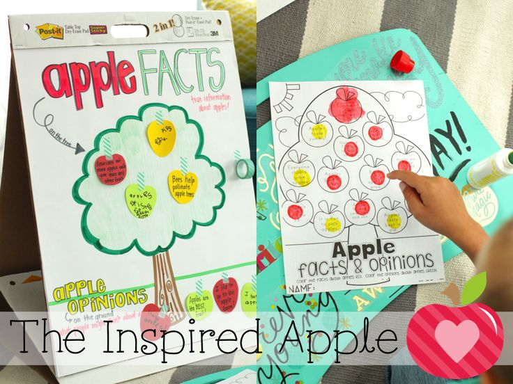 Teaching facts and opinions in the primary classroom using apples!