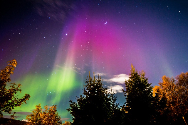 Northern Lights - Tromso, Norway