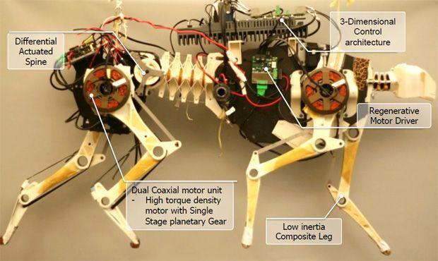 Mit Cheetah Robot Cheetah Mit Robot Robot Technology Robot Design Robots Concept