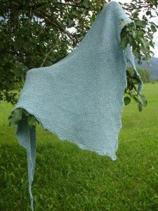 This apple tree is getting a lot of work as my model lately. Asparagus Shawl from The Garden Delight Collection by Elsebeth Lavold