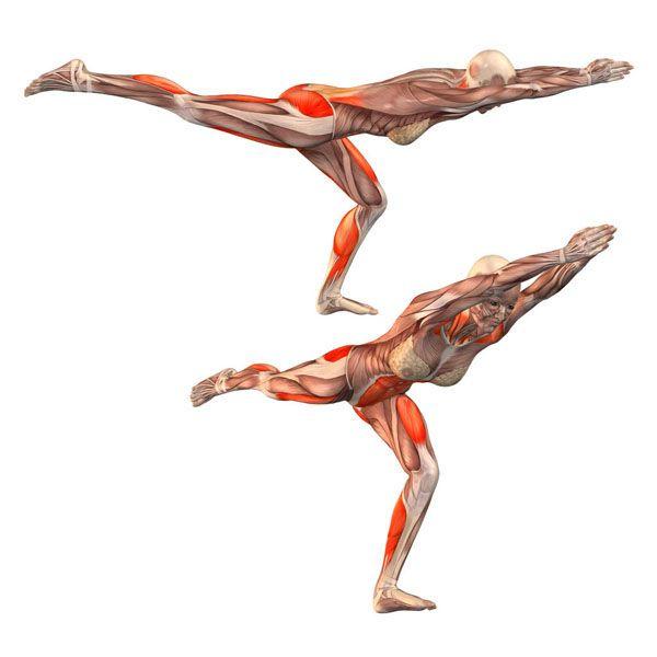 warrior pose on half-bent left leg - Virabhadrasana half bent left - Yoga Poses | YOGA.com