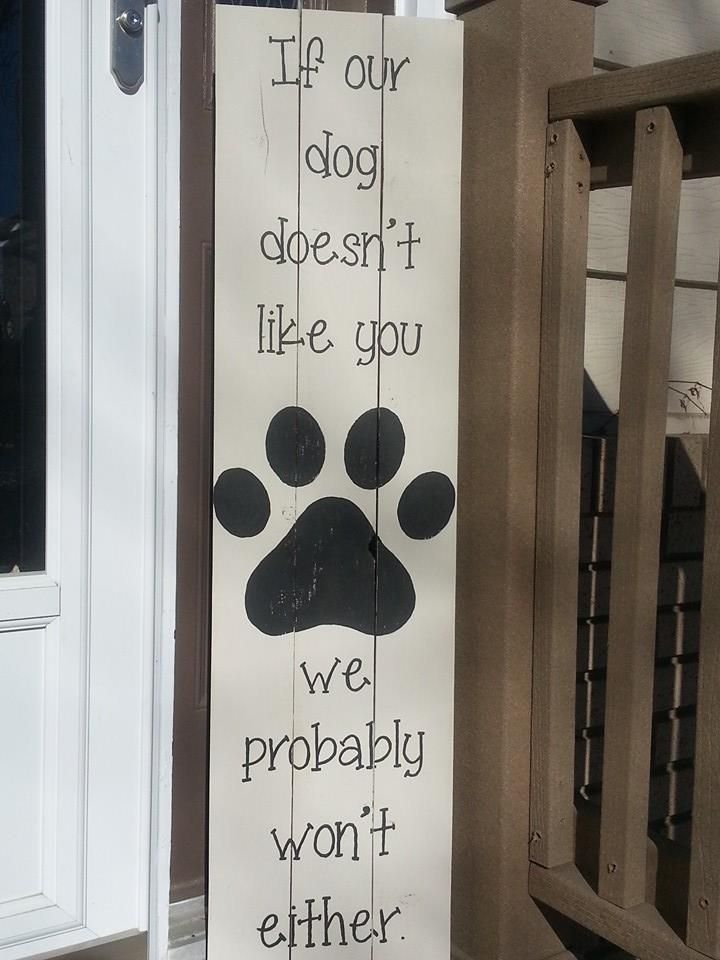 If our dog doesn't like you We probably won't either!