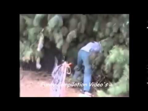 Cat Funny Dog Funny Animal Video Compilation 2014