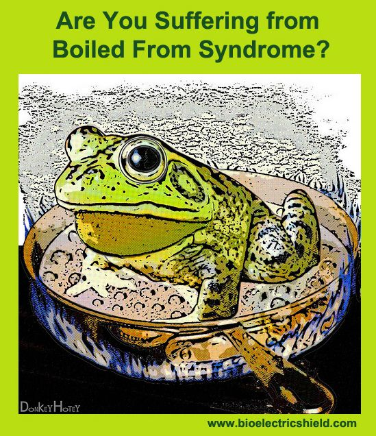 Are you Suffering from Boiled Frog Syndrome? http://www.bioelectricshield.com/in-the-media/electrosensitivity/513-electrosensitivity-and-the-boiled-frog-syndrome-73050887.html #emf sENSITIVITY