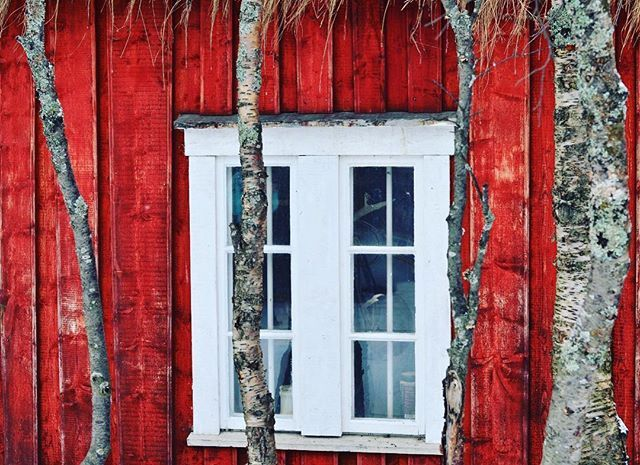 #norskehus #redhause #photoshoot #rorbuer #cabin #passionfortravel #fishingvillage #wondermore #awakethesoul #outdoortones #mittnorge #visitnorway #cabinlife #artofvisuals #gothere #ilovenorway #insidertravel #exploretocreate #exploremore #visualcollective #photography #instaphothography #instaphothoday #instaphoto #northernnorway #nordic #norway #destination #travelersnotebook #traveljournal