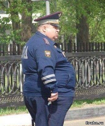 «Санкционные продукты» в России начнут уничтожать с 6 августа. Появились первые фото сотрудников спецподразделения.
