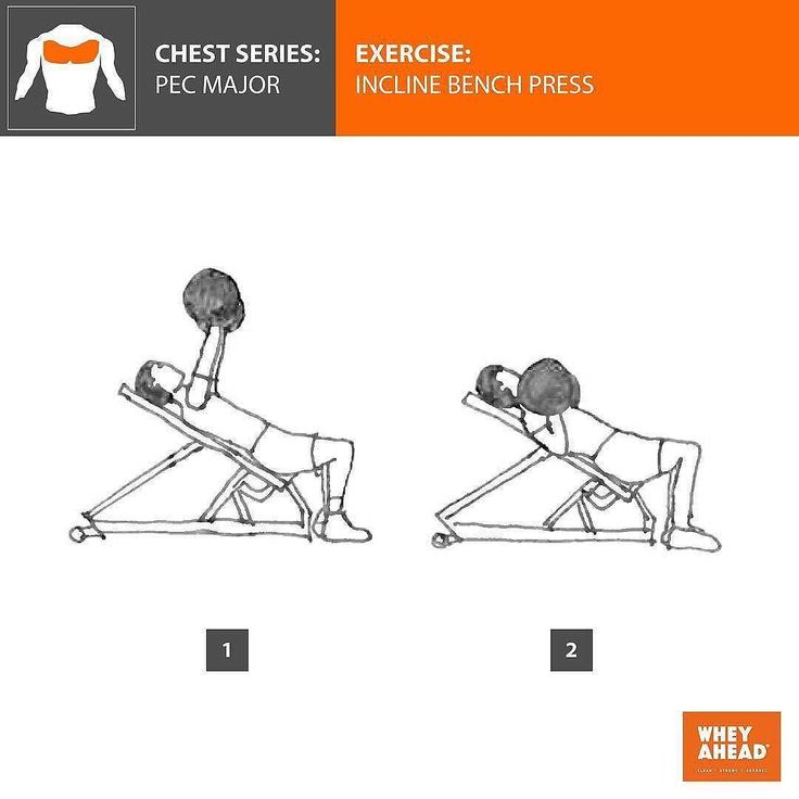 Hit your upper chest this Humpday with an incline press! Have a great day fitfam.  CHEST SERIES : PECTORALIS (PECS) MAJOR. (It also works the pectoralis minor deltoids and triceps)  EXERCISE : INCLINE BENCH PRESS  TECHNIQUE : 1) Set the bench to a 30 degree incline. Lie on the bench with your upper body and head supported by the bench and your feet flat on the floor. Grip the bar firmly with your hands just outside shoulder width keeping your wrists straight. 1 2) Lower the barbell to…
