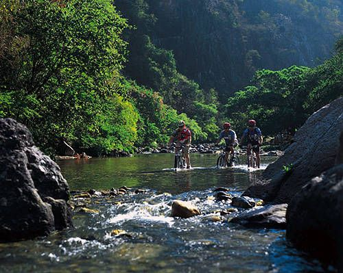 Mountain Biking.Naturebik Trail, Bikes Tours, Trout Fish, Mountain Biking, Puerto Vallarta, Families Vacations, Into The Wood, Nature Beautiful, Mountain Bikes