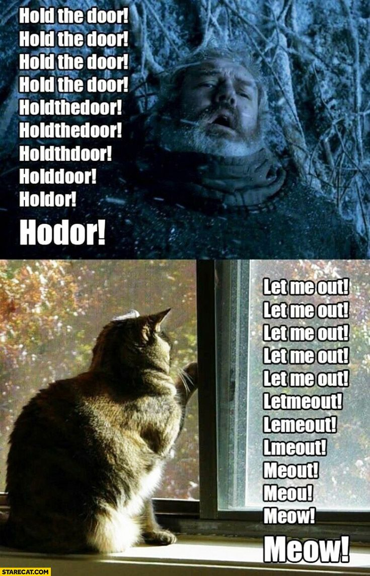 hodor hold the door cat let me out - Google Search