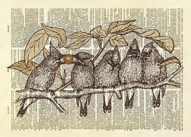 Five Cardinals on a Branch Dictionary Art Print