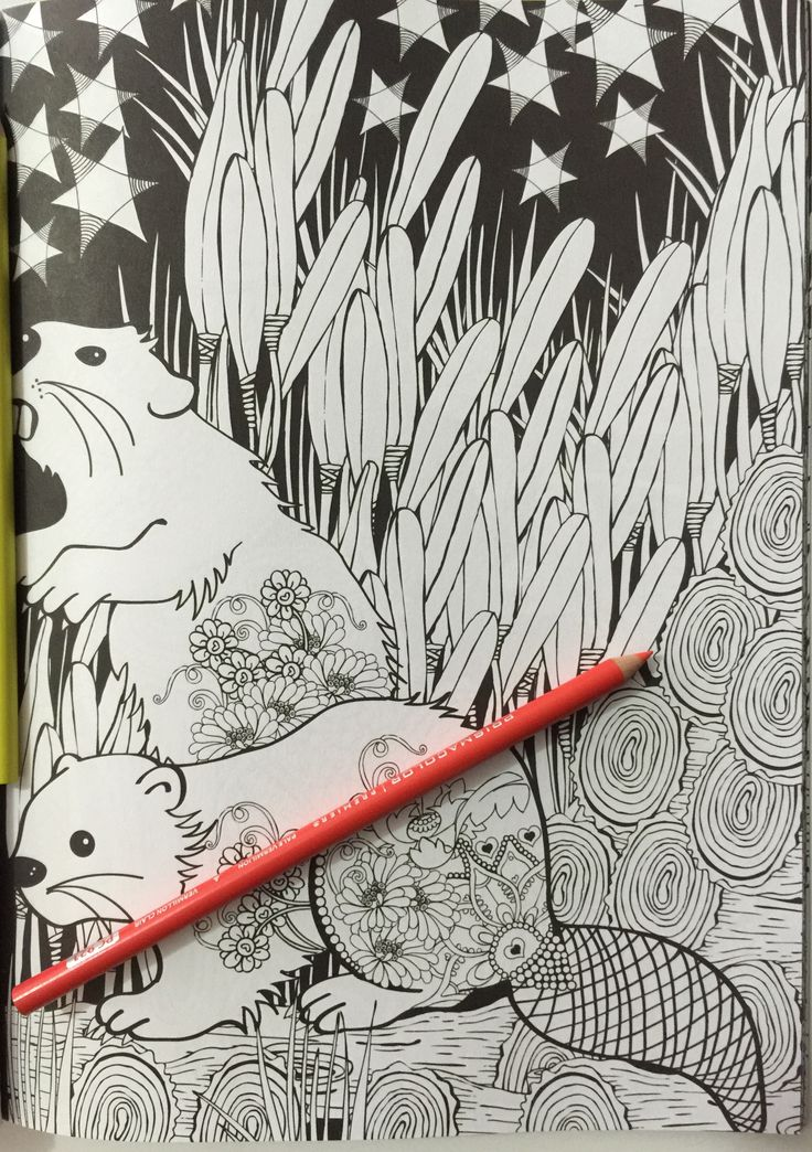 Creative Haven Midnight Forest Coloring BooksAdult