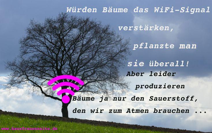Würden Bäume das WiFi-Signal verstärken, pflanzte man sie überall! Aber leider produzieren Bäume ja nur den Sauerstoff, den wir zum Atmen brauchen ...