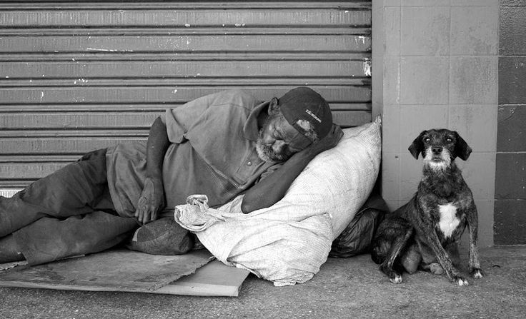 homeless - Google Search