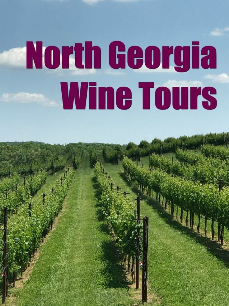 North Georgia is beautiful country. The weather in North Georgia is also perfect for wineries.  https://www.southernfamilyfun.com/north-georgia-wine-touring/ #helenga #visithelen #northgeorgiamountains #winetrous