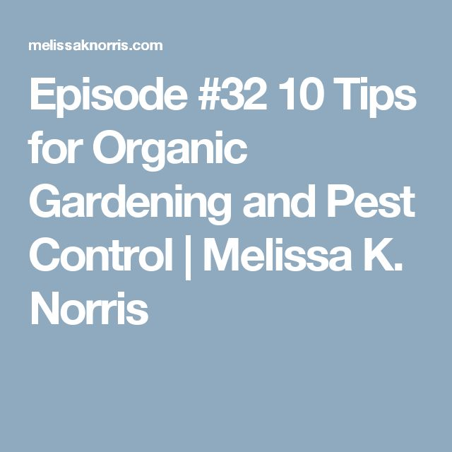 Episode #32 10 Tips for Organic Gardening and Pest Control   Melissa K. Norris
