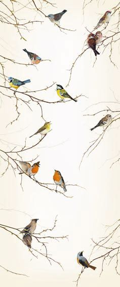 Love this wallpaper. Perfect for an accent wall, or a small powder room or closet. Would be a gorgeous woodland inspired guest room too. Birds Wallpaper Mural | Door Murals | Wallpaper Murals Ltd