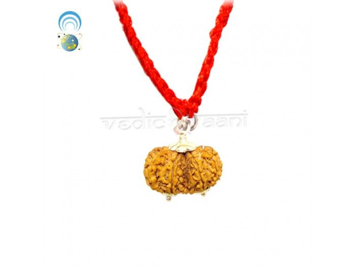 Gauri Shankar Rudraksha Beads Online from Vedicvaani.com at low price, India's most trusted brand in authentic geninue rudraksha beads online, Free worldwide shipping.