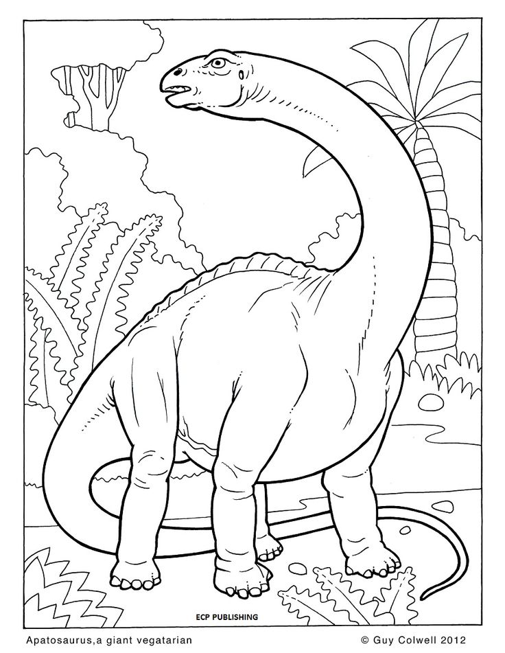 dinosaur_coloring_pages___animal_coloring_pages_for_kids_dinosaur_dinosaurs_coloring_pages_printable_.jpg (900×1164)