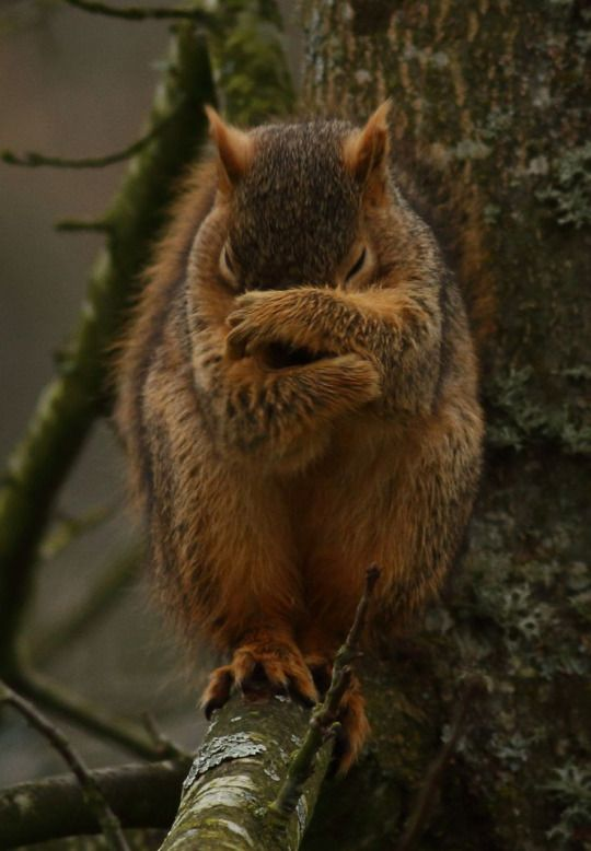 Shhhh. I must pray.