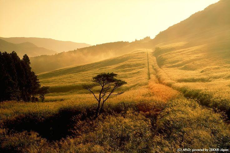 秋天是最適合旅行的季節,說到日本的秋天,總讓人想起晚秋時分,那染得通紅的楓葉。日本由於緯度的關係,各個楓葉的觀賞時期分散於10月至11月之間。而9月—乍暖還寒的初秋時分,則有著許多秋楓之外的魅力景點。 第十名【北海道 能取湖】 能取湖...