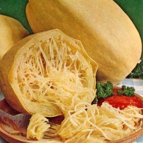 SPAGETTIPUMPA 'Vegetable Spaghetti' i gruppen Grönsaksväxter / Fruktgrönsaker / Pumpa hos Impecta Fröhandel (9445)