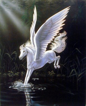 Enliven your living space with this mythical white Pegasus horse art print poster. It This beautiful art goes well in any room. This charming piece of art captures the image of white Pegasus horse jumping into the water is sure to grab lot of attention. Your guests will definitely compliment you for your excellent taste. Make your order today and enjoy your surroundings.