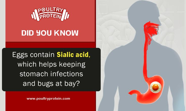 Sialic acid is related to fast brain growth and also helps keeping stomach infections. So Eat more Eggs...  Visit us @ www.poultryprotein