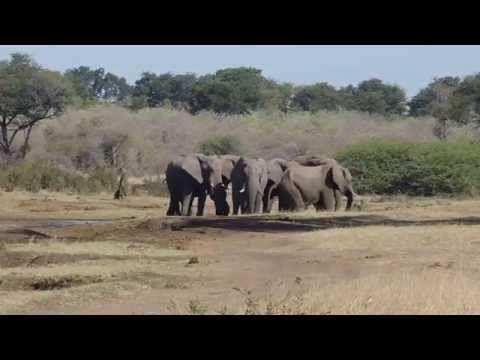 Prawdziwa Namibia – powrót do Kambaku
