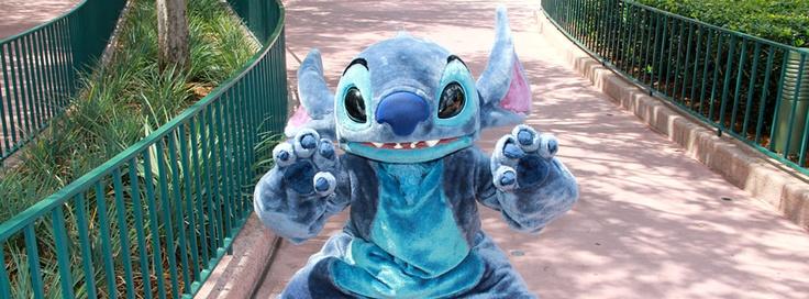 WDWLIVE - Walt Disney World --Stitch