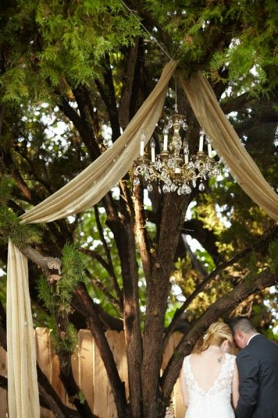 Wedding tree decoration alternative. This one combines the lights and draped fabric that I like. - MR