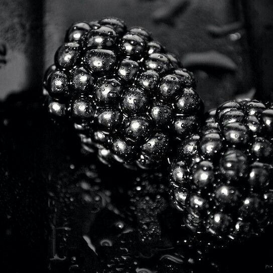 A older pic #blackberries #photo #drops #blackphoto #foodporn #foodphotography