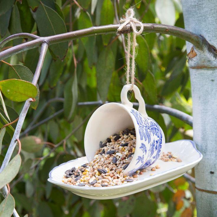 Create a cute bird feeder