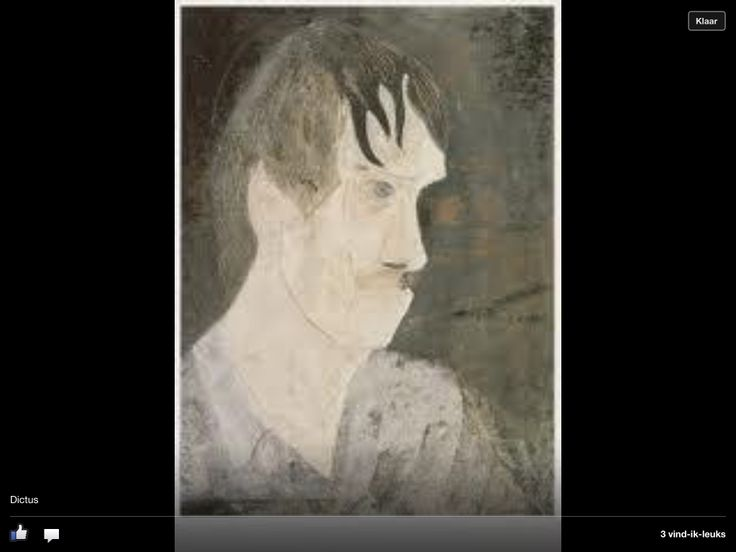 Portrait. Sjoerd de Vries